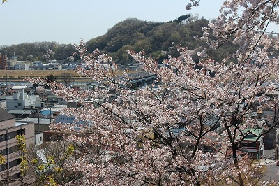 2014-04-01 織姫山の桜と蕎遊庵 003