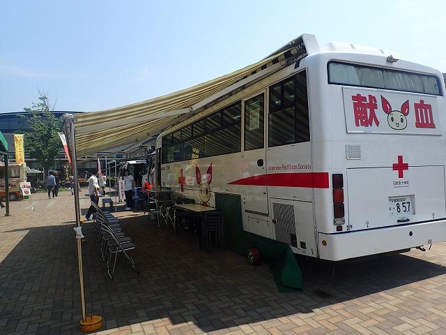 P5220021